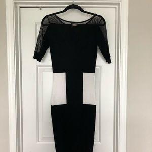VENUS Mesh Color Block Dress 👗
